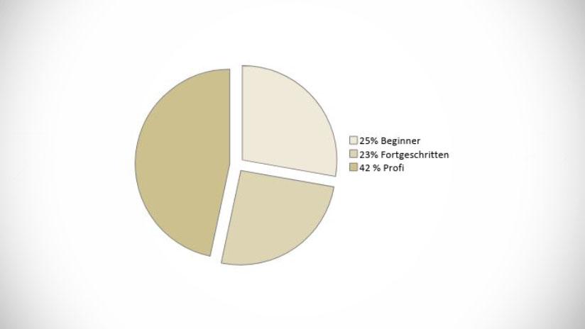 Ergebnisse der Umfrage: Bewegtbild-Know-How in Konzernen